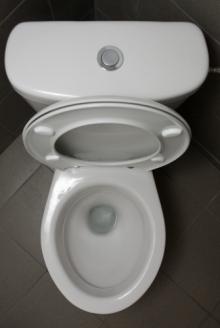 toilet (335x500)